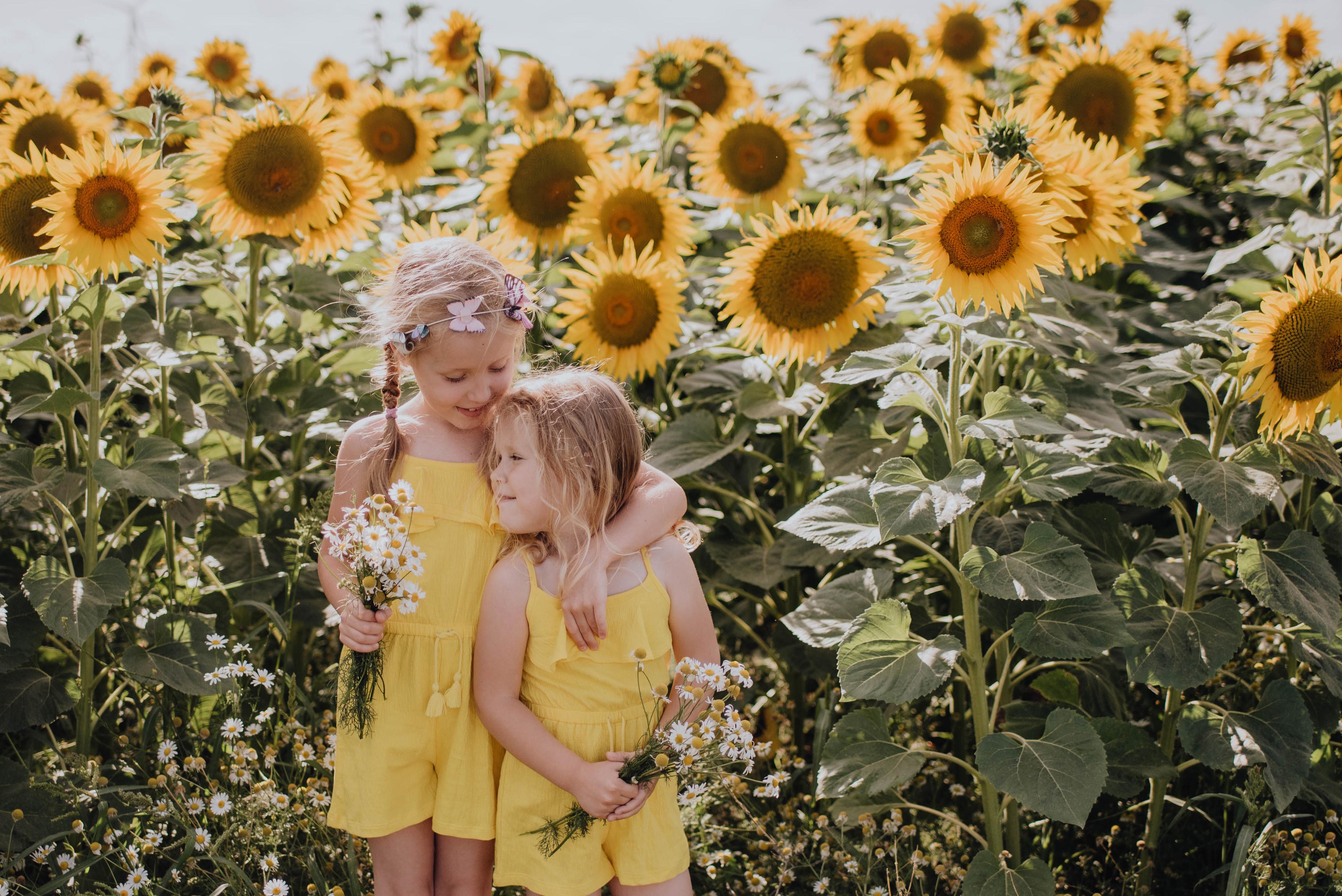 Klementyna i Nela – sesja w słonecznikach